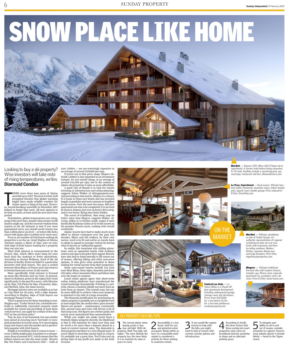 French Alpine Ski Property Feature